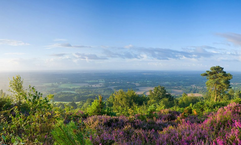 Area Of Outstanding Natural Beauty Surrey