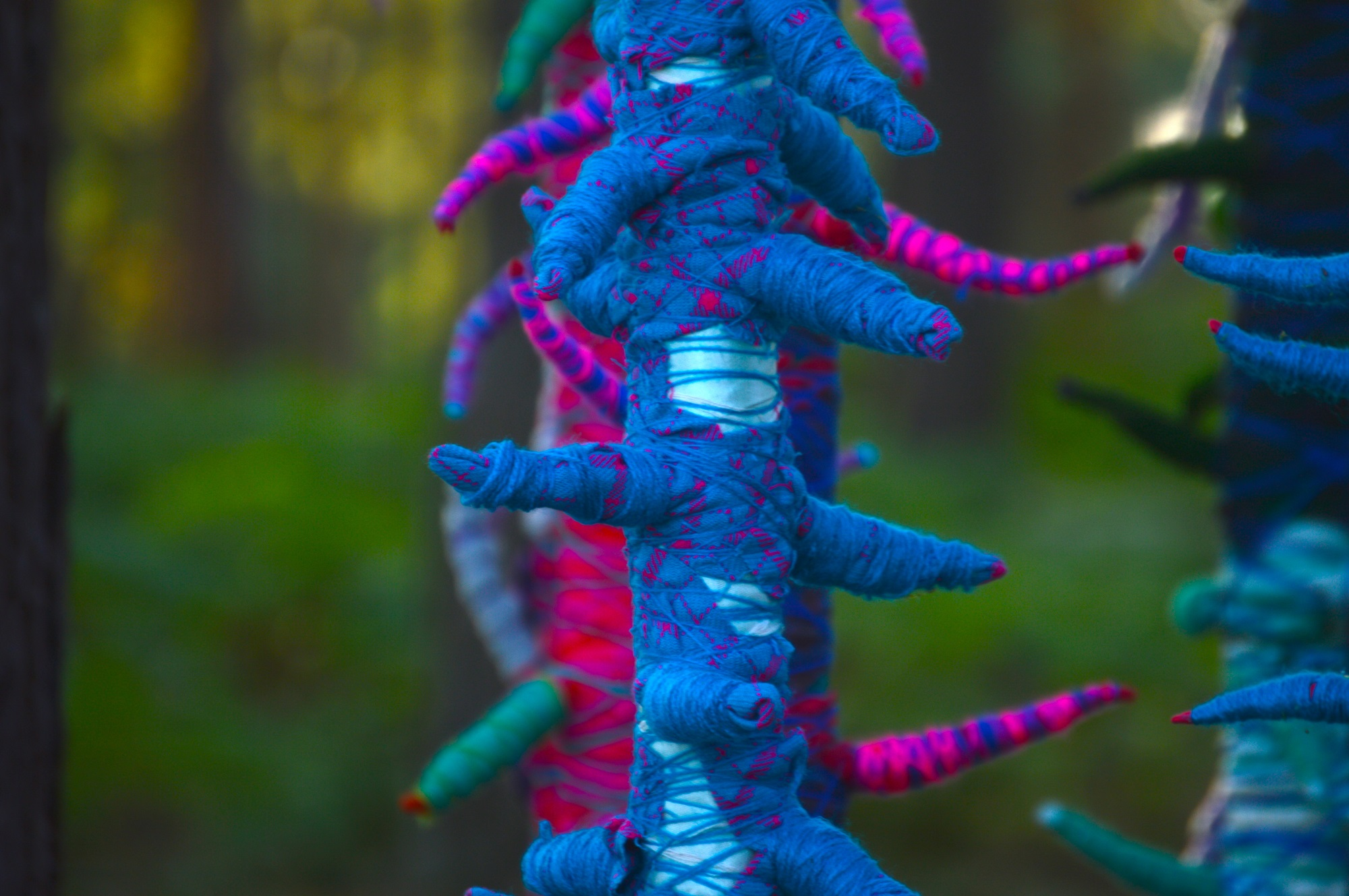 Spine Trees by by Tara Kennedy, Annette Mills, Delia Salter and Susan Stringfellow