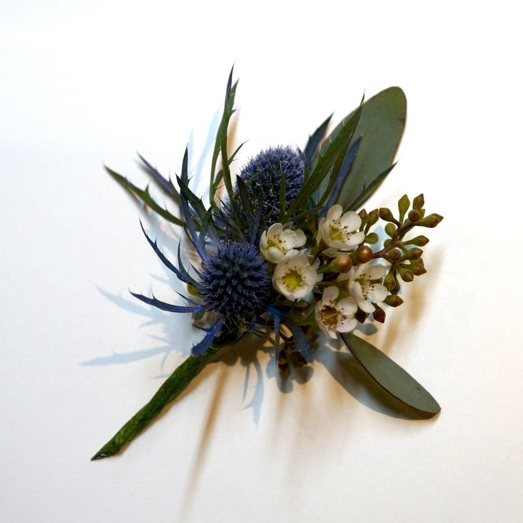 teotf-eryngium-euc-and-waxflower-buttonhole