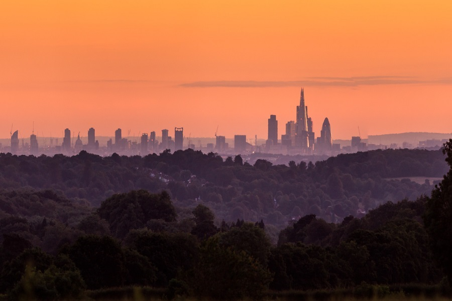 London from Reigate by John Miller