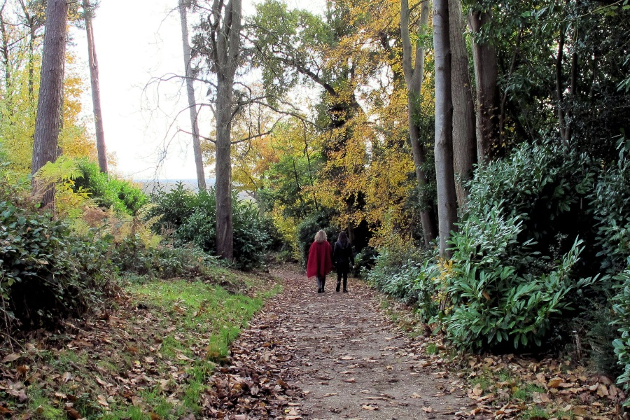 Autumn Walking in Deepdene Gardens