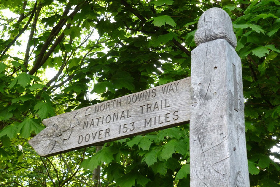 Follow the North Downs Way National Trail