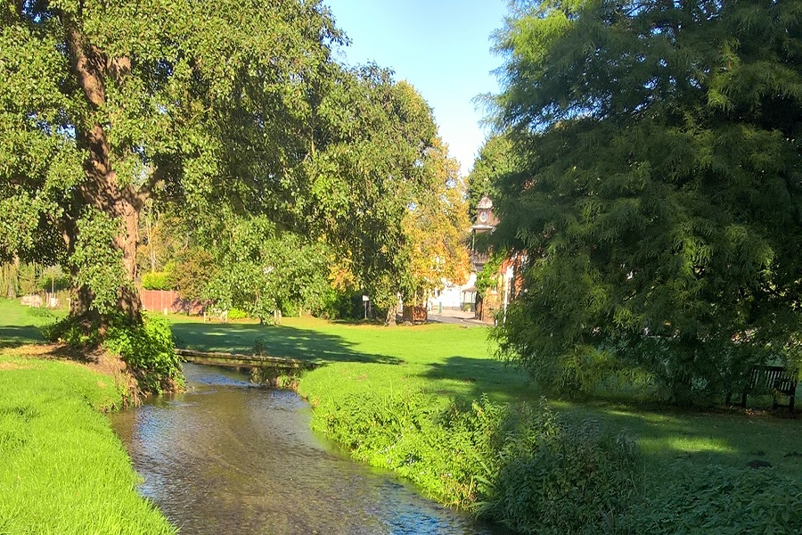The Tillingbourne River at Abinger