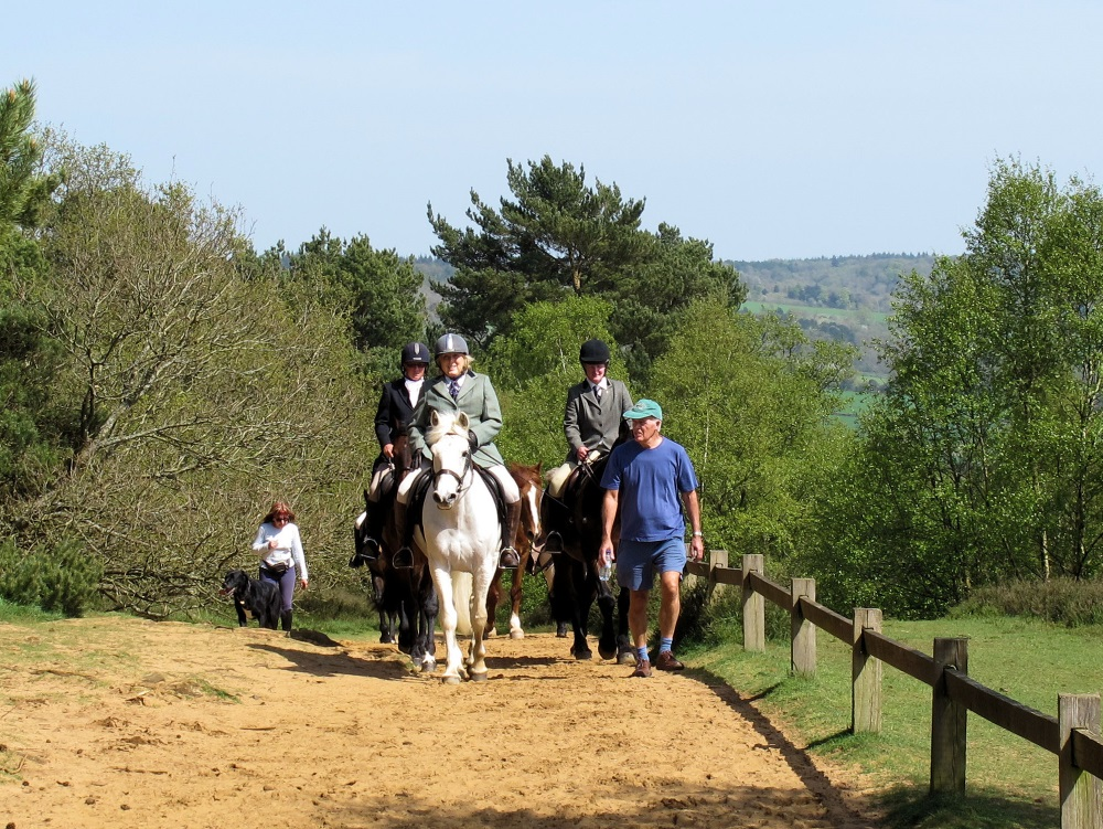 Riding up St Martha's Hill (photo by Denise Furlonger)